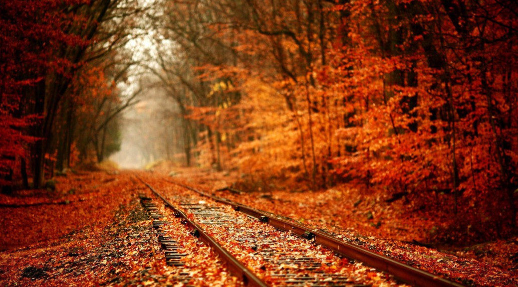 Railroads-In-The-Deciduous-Forest-Wallpaper-HD