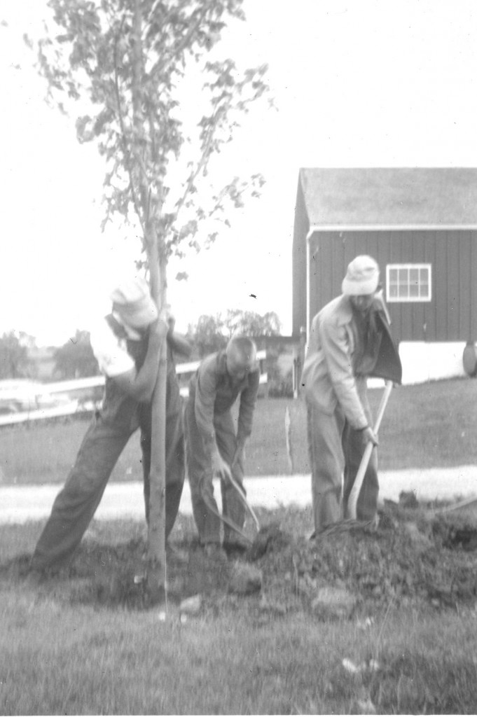1953  GRANDPA BARRETT, ME AND DAD