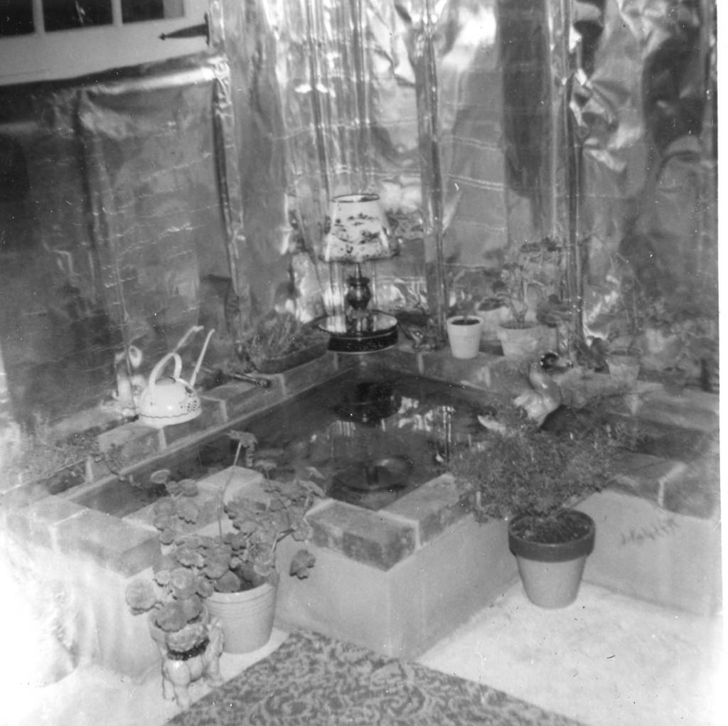 1953 FISH POND