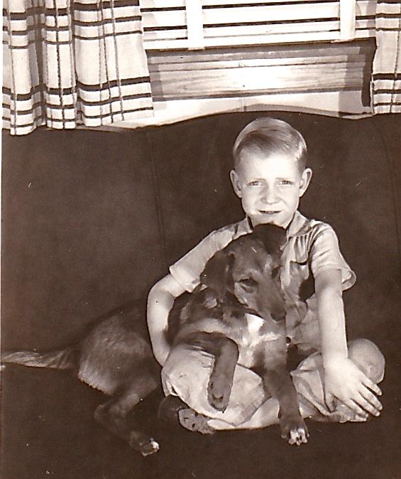 1946 SANDY SHEPHERD MIX