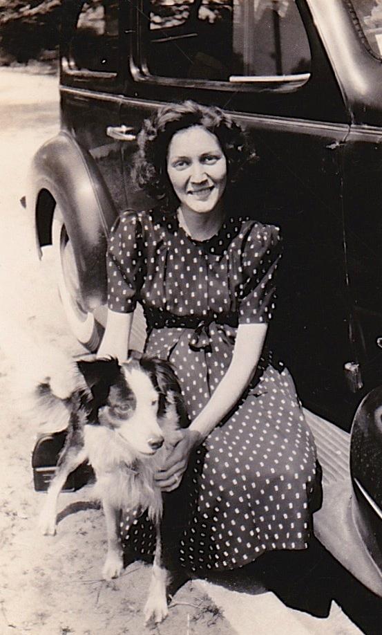 1942 LYNDO BORDER COLLIE