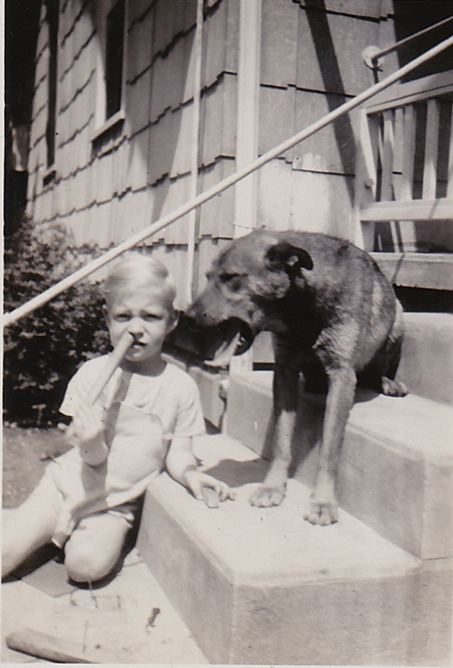 1945 A STRAY THAT ADOPTED ME