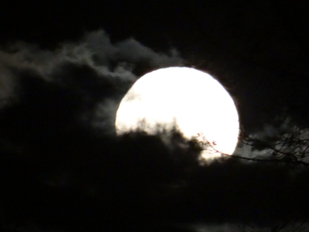 FULL CLOUDY MOON