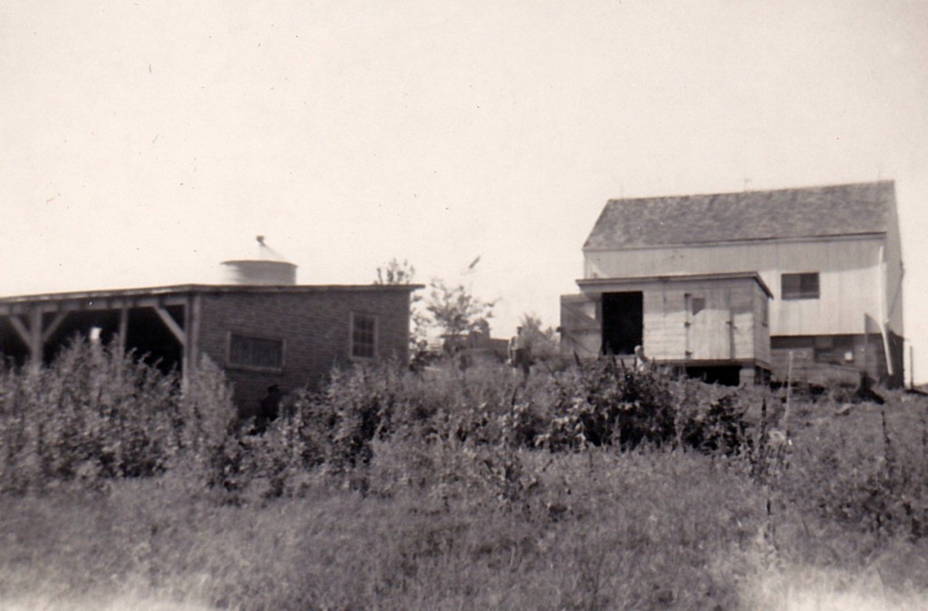 1952 SOUTH SIDE OF BARN