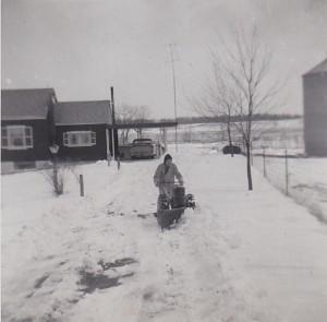 1954 WINTER