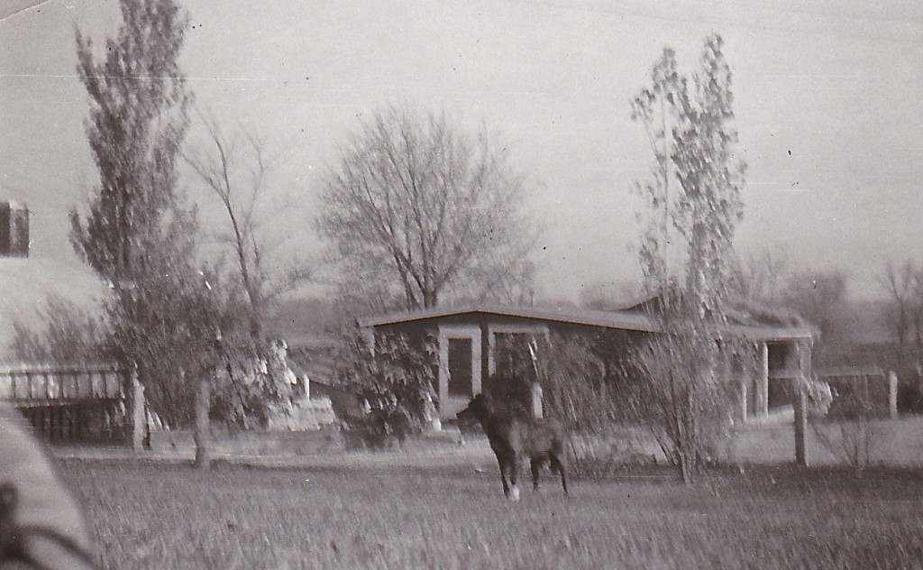 1957, BARRETT`S CHICKEN HOUSE
