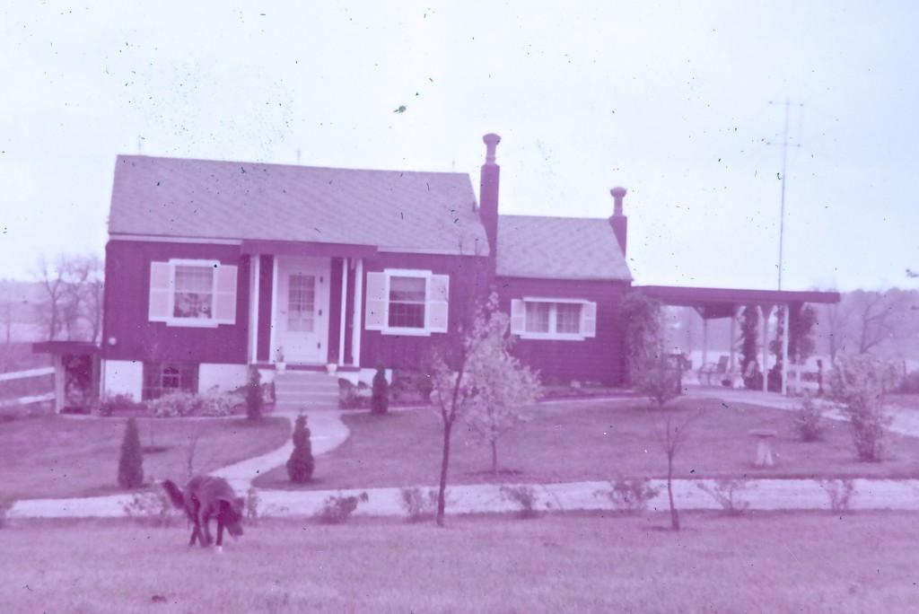 1958 TIPPY