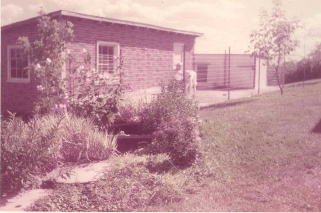 1958 DOG KENNEL