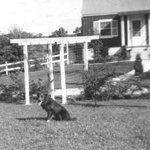 1958 NEW ARBOR