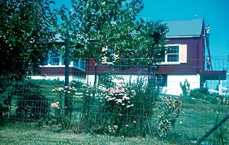 1959 BARN RED