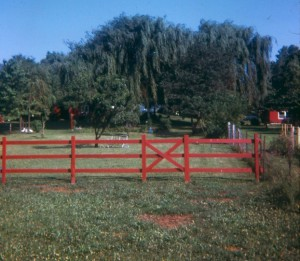 1971 CORRAL FENCE
